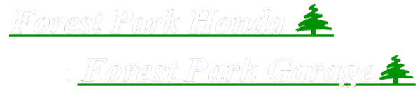 Motorcycles in Erie, PA | Forest Park Honda